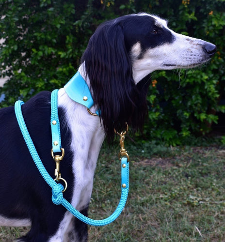 Hybrid Dog Leash - Turquoise Ombré