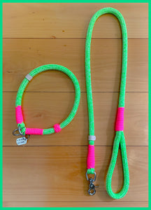 Dog Leash - Neon Mint