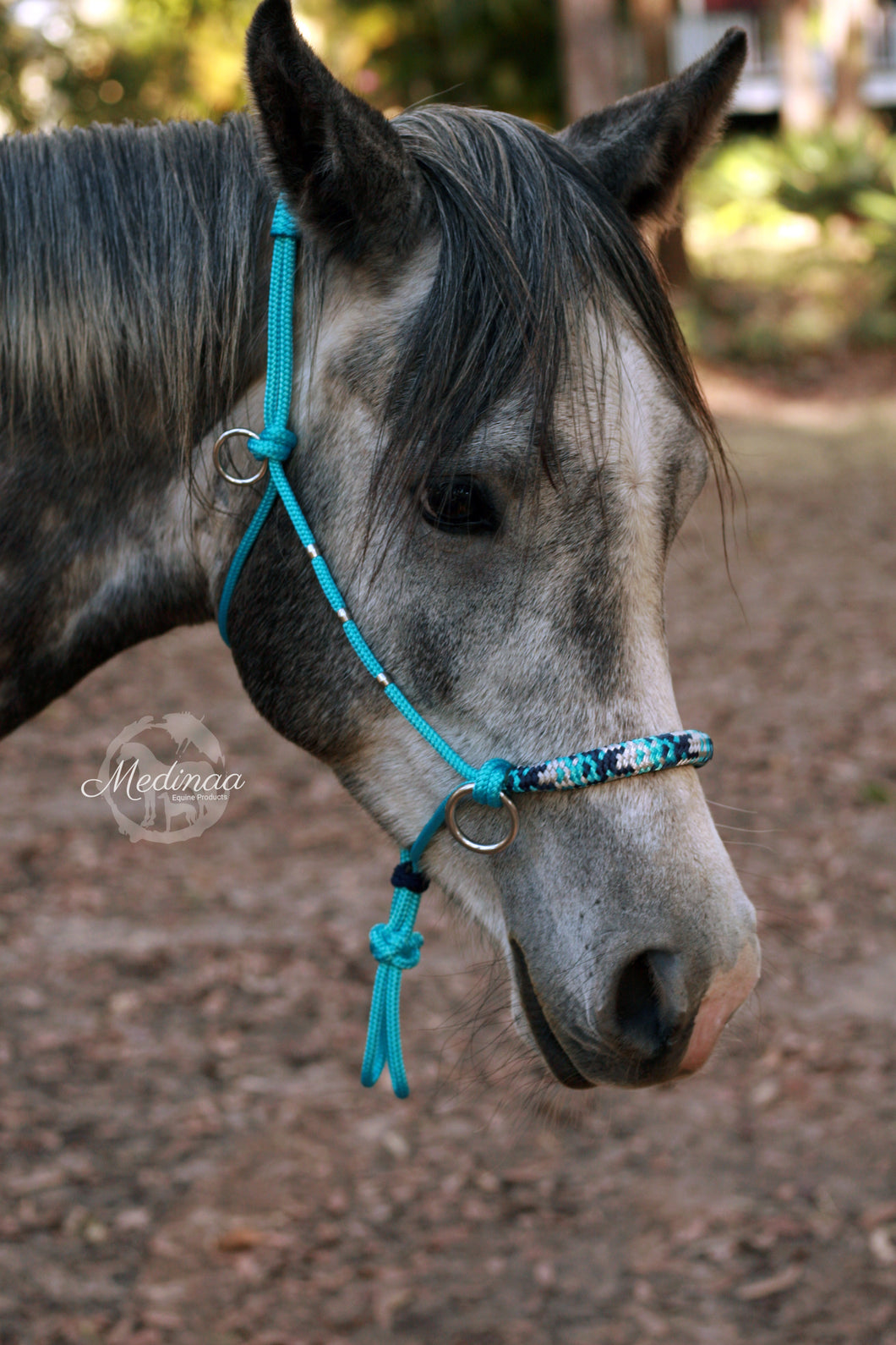 IN STOCK 3in1 Bitless Bridle - LowKey - Cob