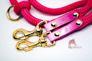 IN STOCK Hybrid Dog Leash - Pink Ombré