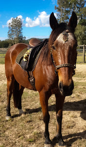 IN STOCK 3in1 Comfort Bitless Bridle Set - Espazade - Full - 9ft