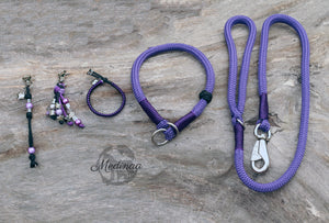 Dog Leash - Purple