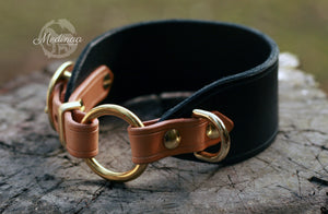 Luxury Dog Collar - Regio