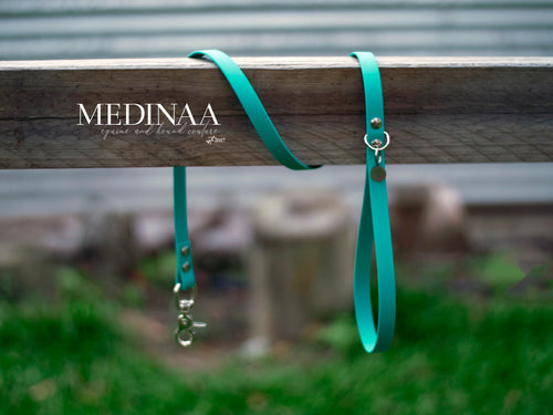 PVC Dog Leash - Turquoise