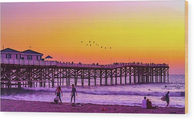 Flock In Pacific Beach, San Diego - Wood Print