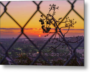 On The Fence In San Diego, California - Metal Print-Metal Print-McClean Photography