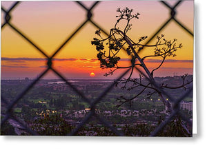On The Fence In San Diego, California By Mcclean Photography - Greeting Card