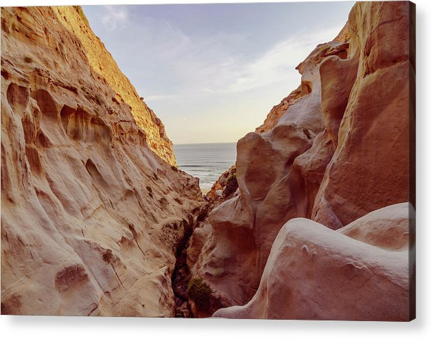 Opening At Torrey Pines Hiking Trail, San Diego. - Acrylic Print-Acrylic Print-McClean Photography