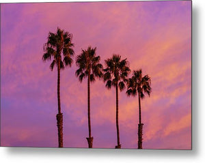 Palms Up - Metal Print
