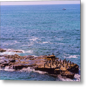 Rendezvous In La Jolla, California - Metal Print