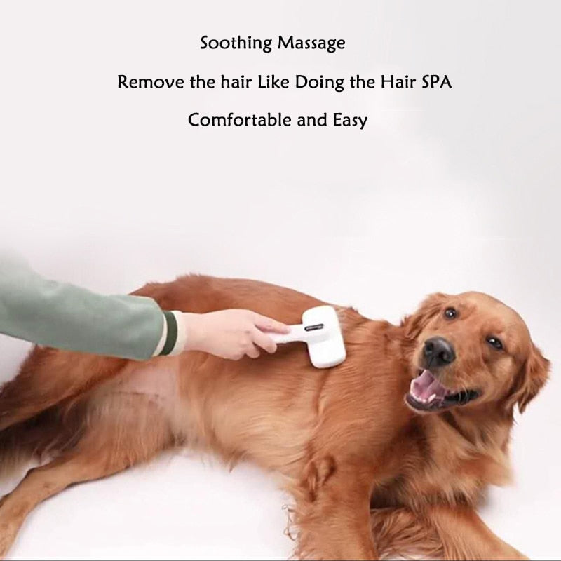 High Quality Hair Remover Pets Comb