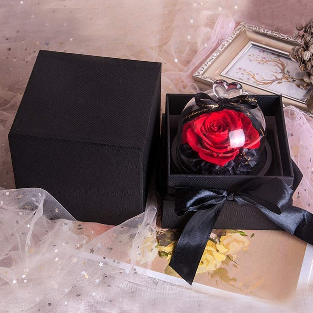 Preserved Fresh Dried Eternal Flower Rose in Glass with LED Light for Valentine Day Gift