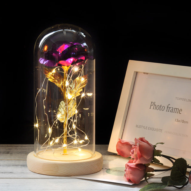 Beauty And Beast LED Rose Flower in Base Glass For Women's Day Gift