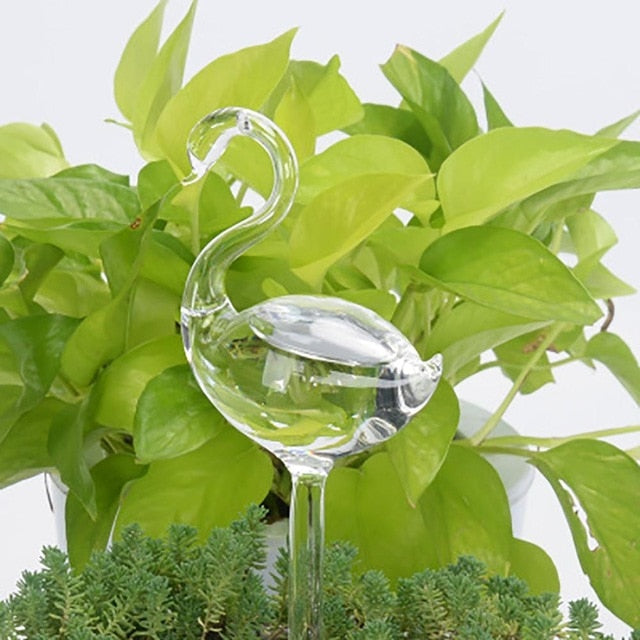 Automatic Self Watering Glass Design Can