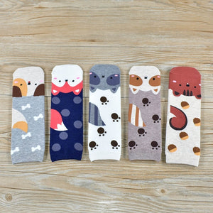 High Quality Popular New Cartoon Pug Kitten Pattern Cotton Socks