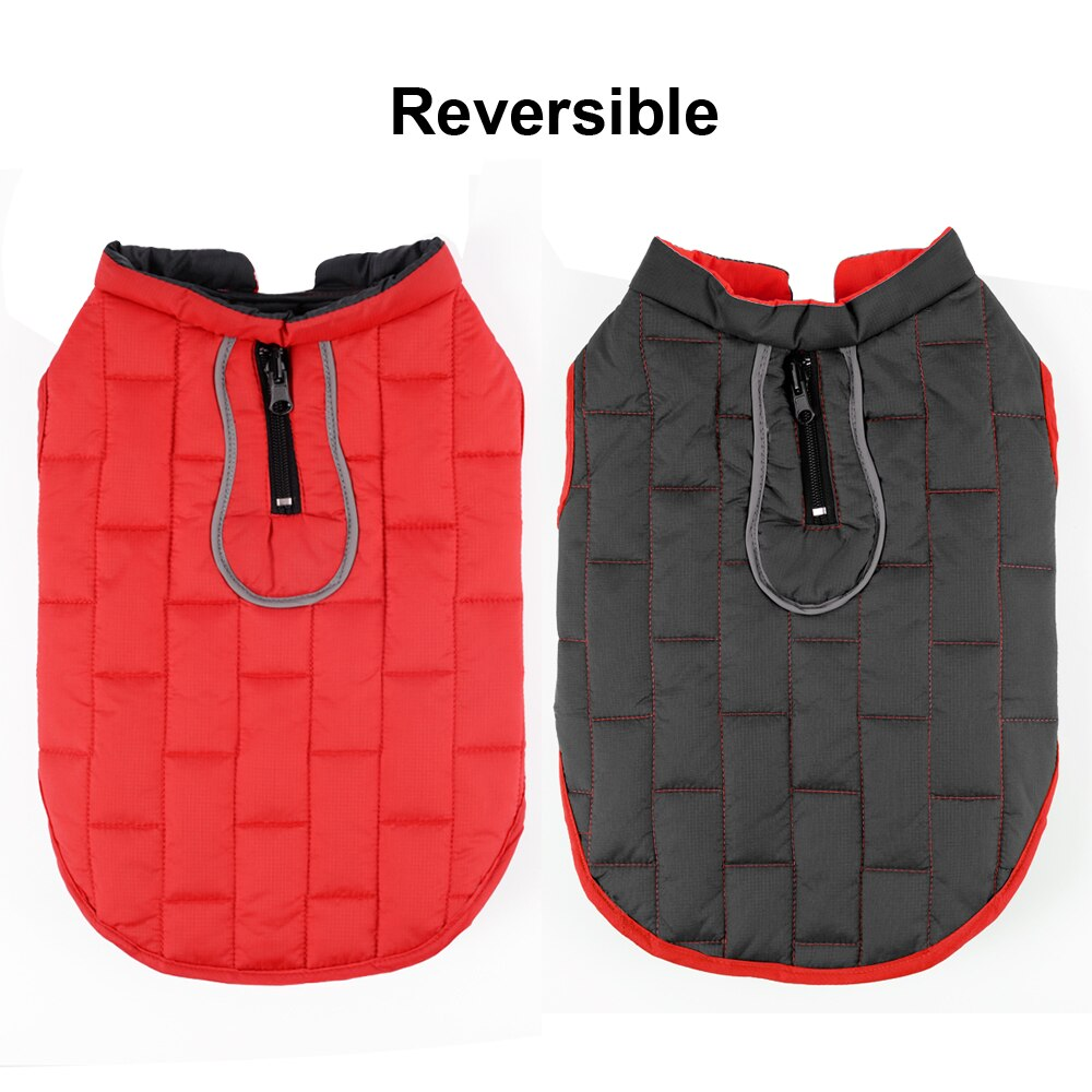 STYLISH Reversible Waterproof Winter Jacket for Small Medium & Large Dogs