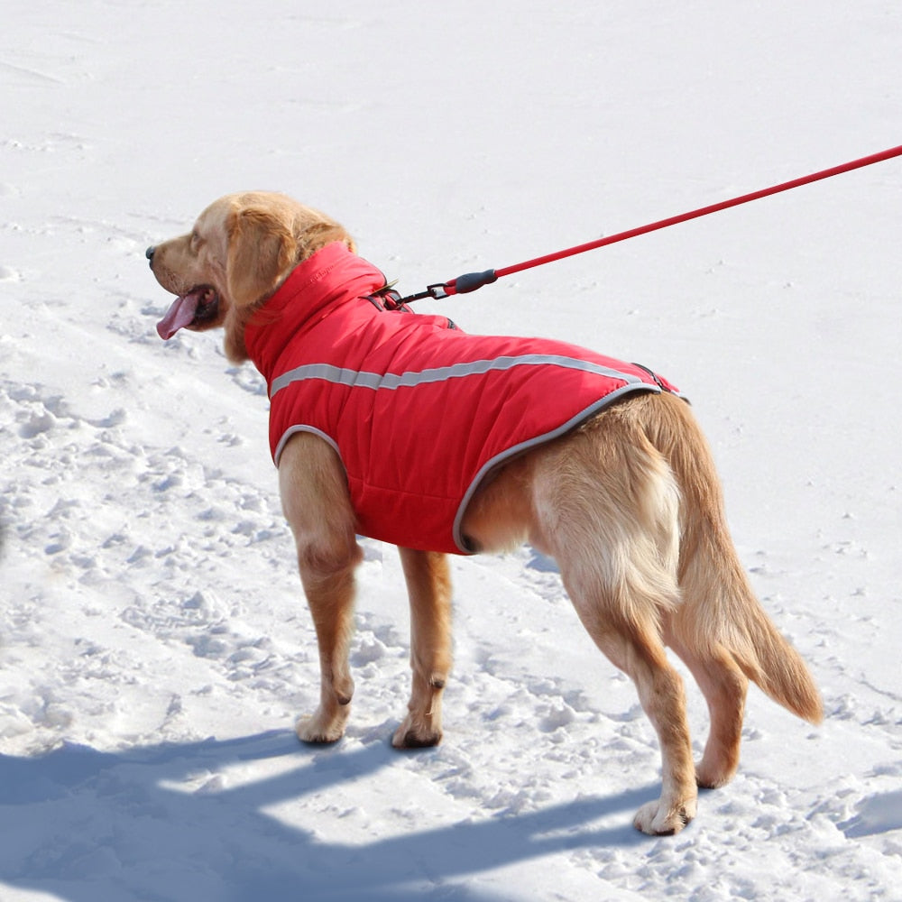 TOP SELLING Winter Waterproof Vest for Medium Large Dogs
