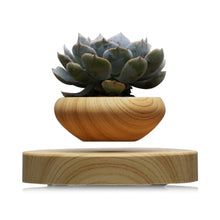 Load image into Gallery viewer, Magnetic Levitation Air Floating Bonsai Plant Pot - IsleOfGifts