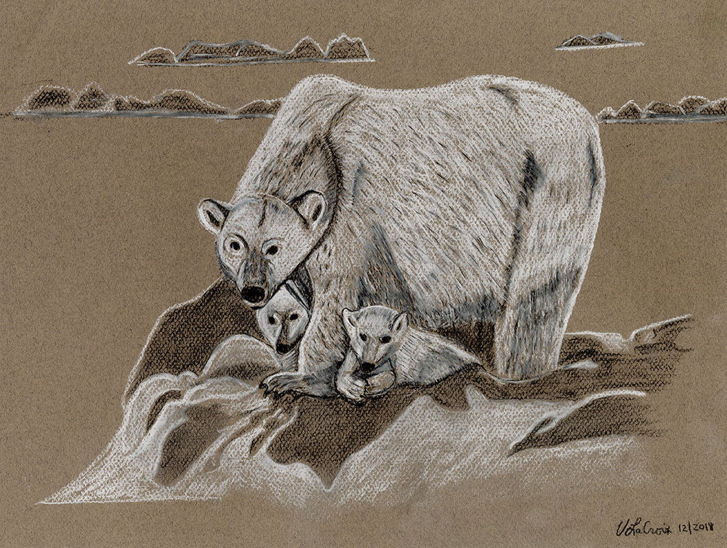 Victoria LaCroix, Untitled (Polar Bears)