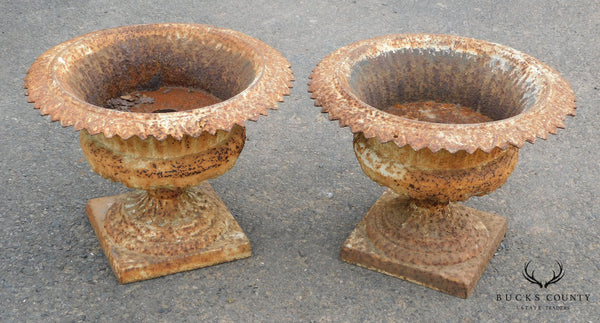 Antique Cast Iron Pair of Garden Urns