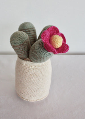 Flowering Crochet Cactus-Pink Ball Centre Flower