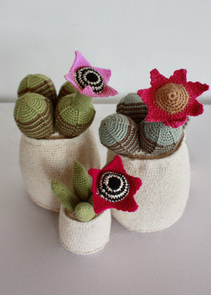 Flowering Crochet Cactus-Pink Trumpet Flower