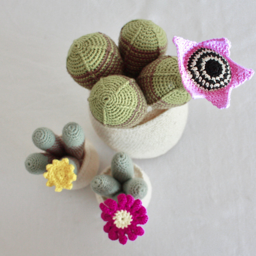 Flowering Crochet Cactus-Pink Star Flower