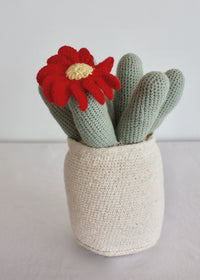 Flowering Crochet Cactus-Red Flower