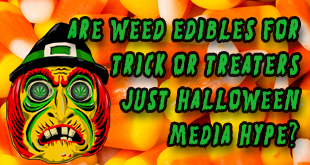 Are Marijuana Edibles a Trick-or-Treat Terror or Just Halloween Hype?