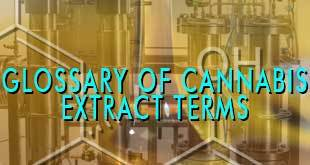 Glossary of Common Cannabis Extract Terms