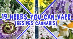 Herbal Vaporizers Benefit from a Wealth of Herbs Beyond Cannabis