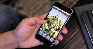 New Smart Phone App for Medical Marijuana in Los Angeles