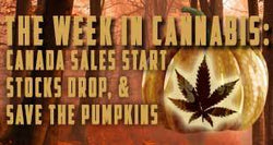 The Week in Cannabis: Canada Sales Start, Stocks Stumble & Save the Pumpkins