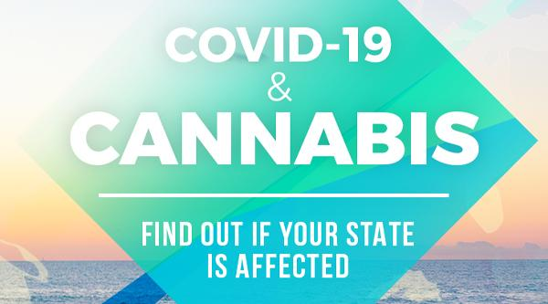 Recreational Cannabis Businesses Operate During the COVID-19 Lockdown