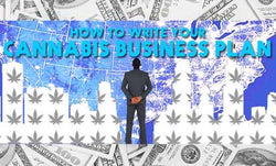 What You Need to Include in Your Cannabis Business Plan