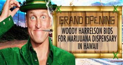 Woody Harrelson Bids For Marijuana Dispensary In Hawaii