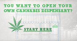 You Want to Open Your Own Cannabis Dispensary? Start Here