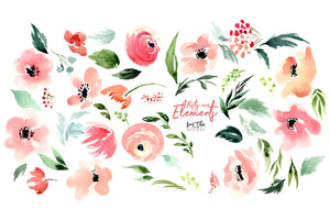 Anemone Watercolor Design Set