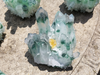 Green Phantom Quartz Clusters