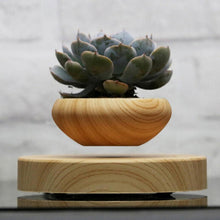 Load image into Gallery viewer, Wooden Levitating Planter
