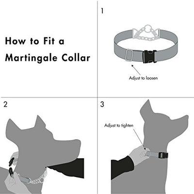 Friends Forever Martingale Collars for Dogs, Reflective No Pull Dog Collar for Training Large/Medium Breed Dogs