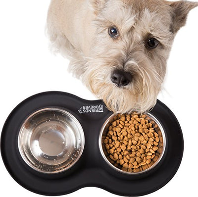 Friends Forever Dog Feeding Station - 2 x Stainless Steel Dog Bowls Non Skid mat, Medium Dog Bowl Set No Spill Silicone Mat Pet Puppy Dogs Cats, Large