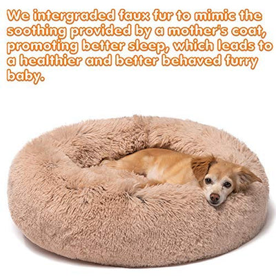 Friends Forever Premium Donut Bolster Orthopedic Dog Bed for Puppy to Medium Dogs & Cat, Tan