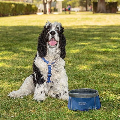 Collapsible Dog Bowl - 2 Pack Travel Dog Bowl, Water and Food Bowls for Dogs - Portable Pet Hiking Accessories
