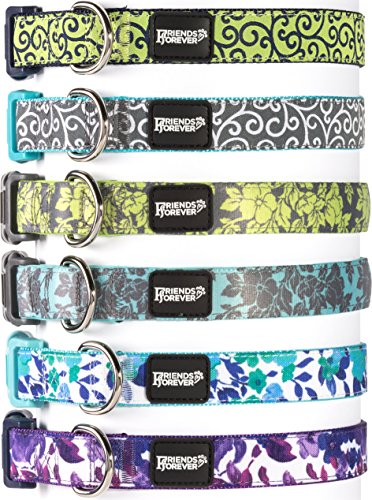 Friends Forever Dog Collar Dogs, Fashion Floral Pattern Cute Puppy Collar, Blue Small 11-16""
