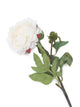 Artificial 80cm Single Stem White Peony - Closer2Nature