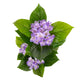 Artificial Light Purple Hydrangea Tree Closer2Nature