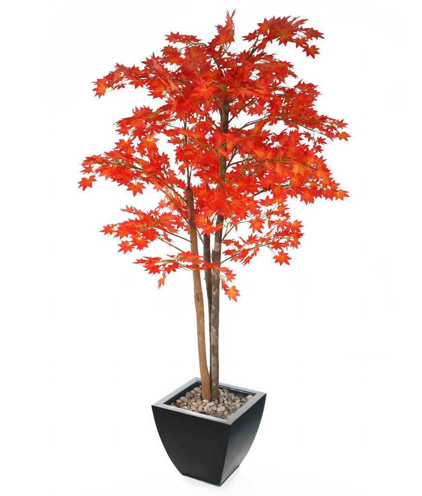 "Artificial 5ft 3"" Red Japanese Maple Tree with with 30cm Portofino Planter and Scottish River Stones Closer2Nature"