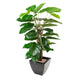 Artificial Pothos Plant with 30cm Portofino Planter and Scottish River Stones