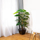 Artificial 4ft Pothos Plant
